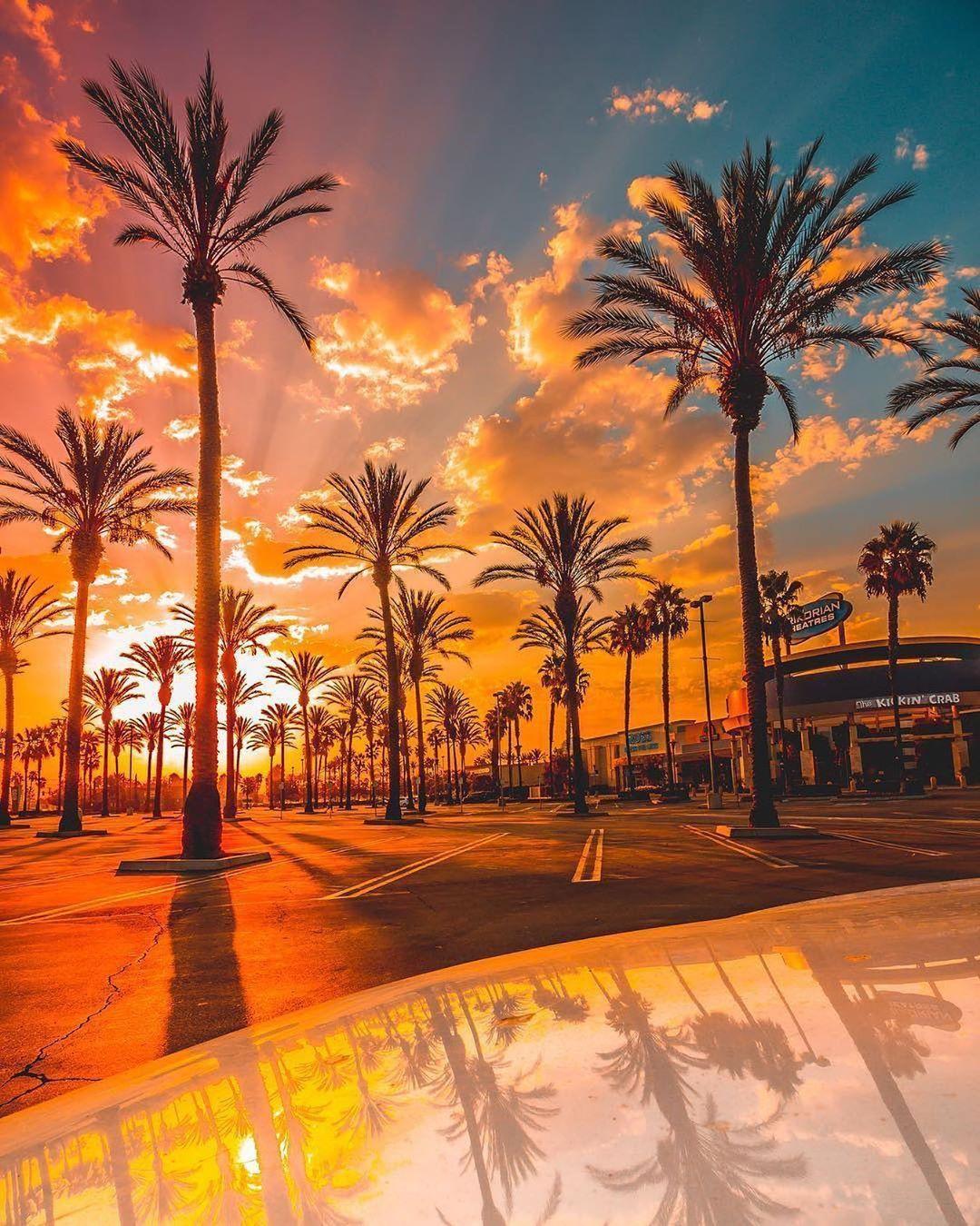 Coucher De Soleil Los Angeles : coucher, soleil, angeles, Coucher, Soleil, Soleil,, Lever, Images, Paysages
