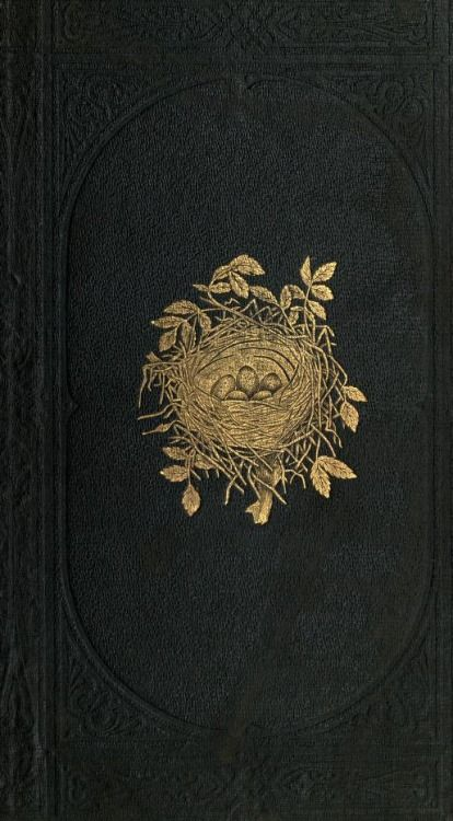 Cover of A Natural History of the Nests and Eggs of British Birds by Rev. F. O. Morris. Published 1870 by Bell & amp; Daldy archive.org