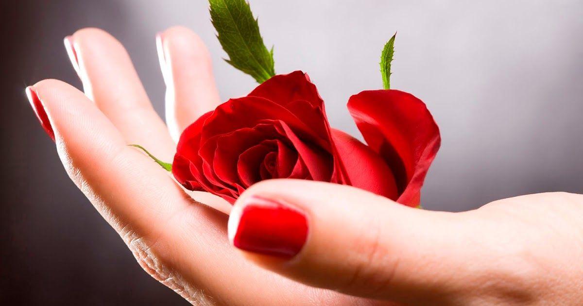 Открытка в руках цветы, пятница пришла открытка