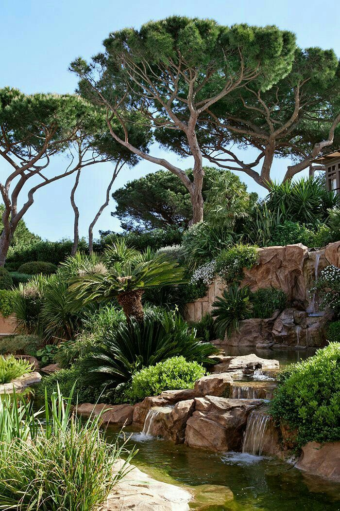 Les plus beaux jardins publis dans AD