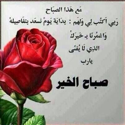 Pin By Jouria Warda On مقتطفات اسلاميه Beautiful Morning Messages Rose Islamic Phrases