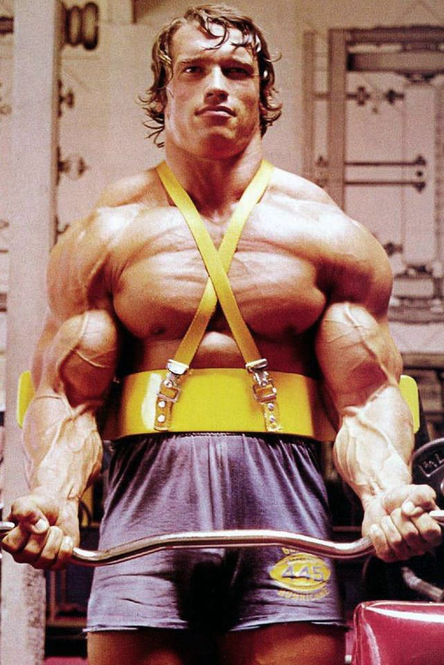 arnold schwarzenegger träningsprogram