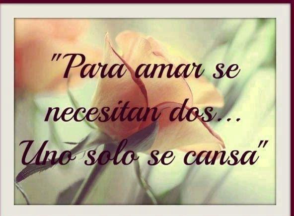 Frases Para El Amor No Correspondido Con Flor Para Reflexionar