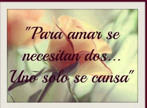 Frases Para El Amor No Correspondido Con Flor Frases Lindas Amor
