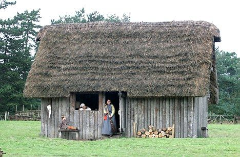 How can I argue something about VILLAGE LIFE in the MIDDLE AGES for an essay?