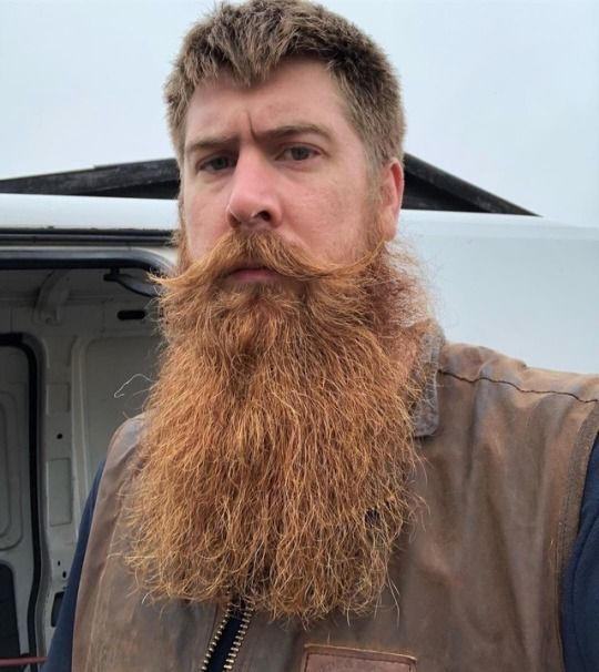 Pin by Arthur on Full Beards in 2019 | Beard no mustache ...