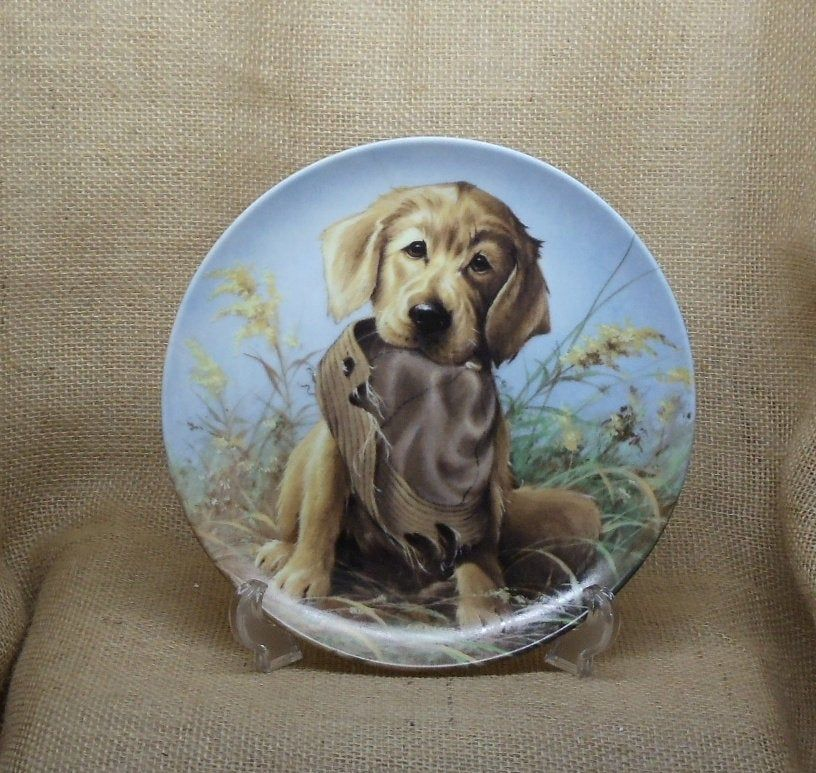 Vintage 1987 Field Puppies Collection By Lynn Kaatz Caught In The