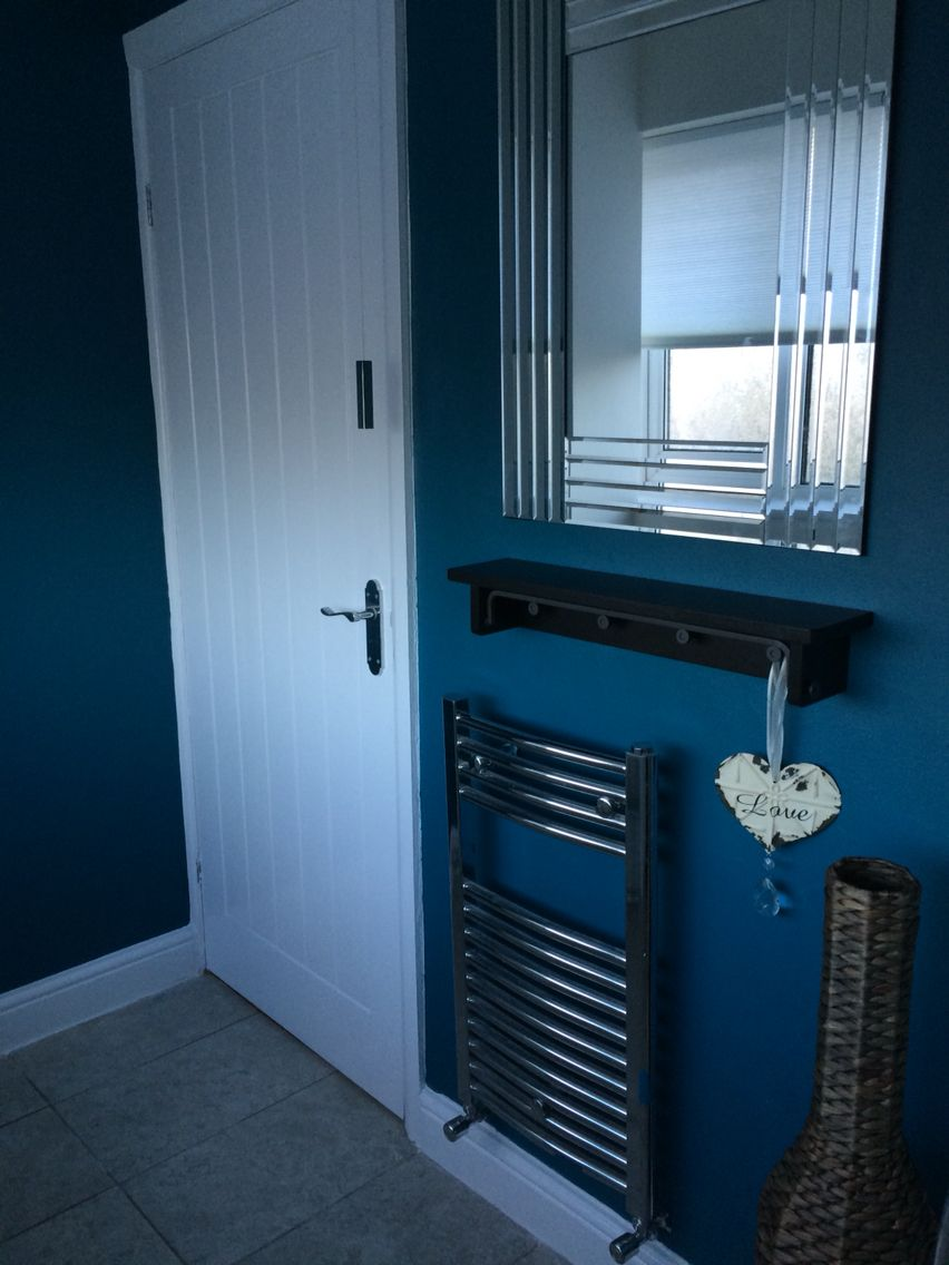Small Toilet Room Downstairs Loo Accent Walls