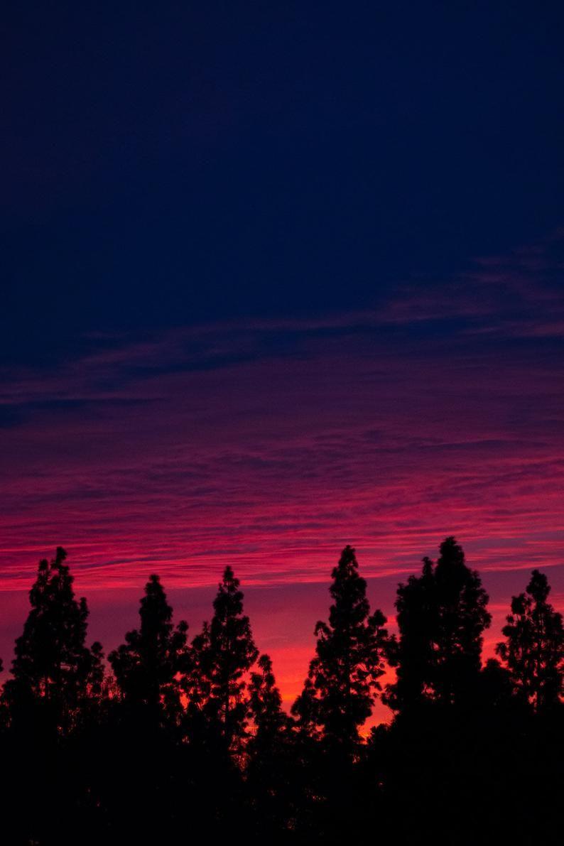 Minimalist Pine Tree Art | Pacific Northwest Art | Digital Download | Wanderlust | Printable Art | Sunset Photography | Abstract Photography
