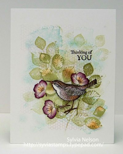 Sylvia's Stamping Corner: COLOURQ CHALLENGE #284...HELLO SPRING..YOU'RE REALLY HERE!