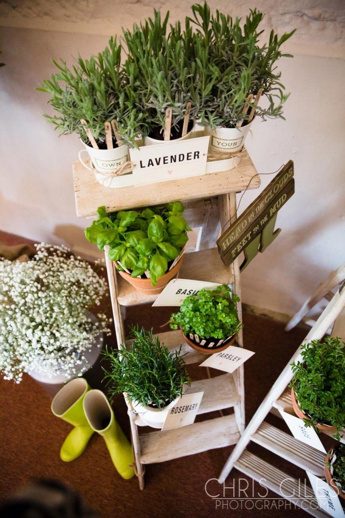 herb garden table plan Herbs Pinterest – Herb Garden Table Plans