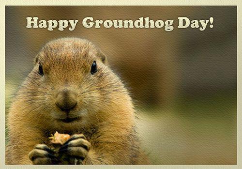 Happy Groundhog Day Ground Hogs Day Groundhogs Day Groundhogs Day Quotes Groundhog Day Happy Groundhogs Day Happy G Happy Groundhog Day Groundhog Day Groundhog