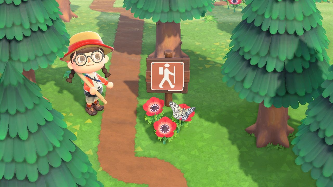 Animal Crossing New Horizons Map Design Ideas