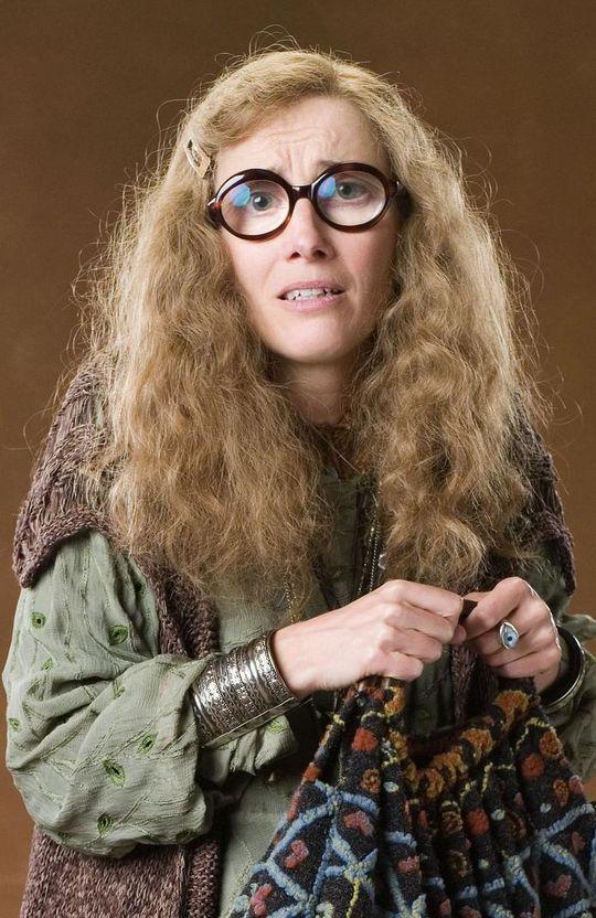 Sybill Trelawney Harry Potter Wiki Harry Potter Teachers Harry Potter Cosplay
