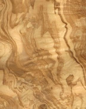 Gorgeous Wood Veneer Olive Ash Burr Finish Materials