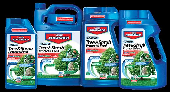 12 Month Tree Shrub Protect Feed Bayer Advanced Garden Care Lawn Garden Trees Shrubs