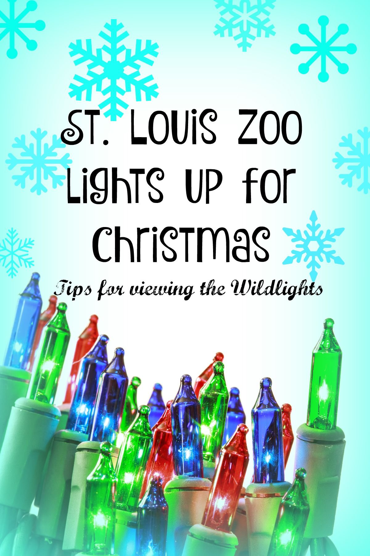 Wild Lights: St. Louis Zoo lights up for Christmas | St. Louis for ...