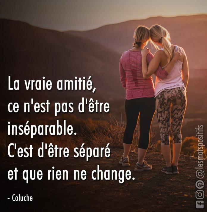 Citation Coluche A Fleur De Mots Citation Amitie Coluche Citation Paroles D Amitie