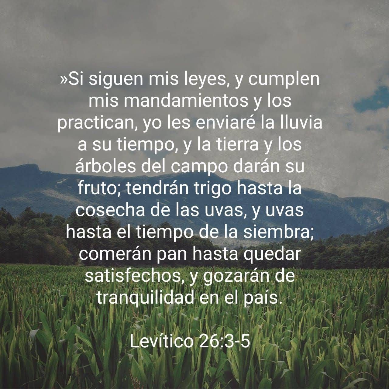 Levitico 26 3 5 Cuando Ponemos Nuestra Confianza En El Senor Y Nos Mantenemos Firmes Meditando En Su Palabra Y Poniendola Por Palabras Biblia Santa Biblia