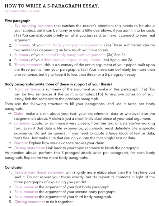Emma S Studyblr Essay Writing Tip Skill Paragraph How To Write The Best