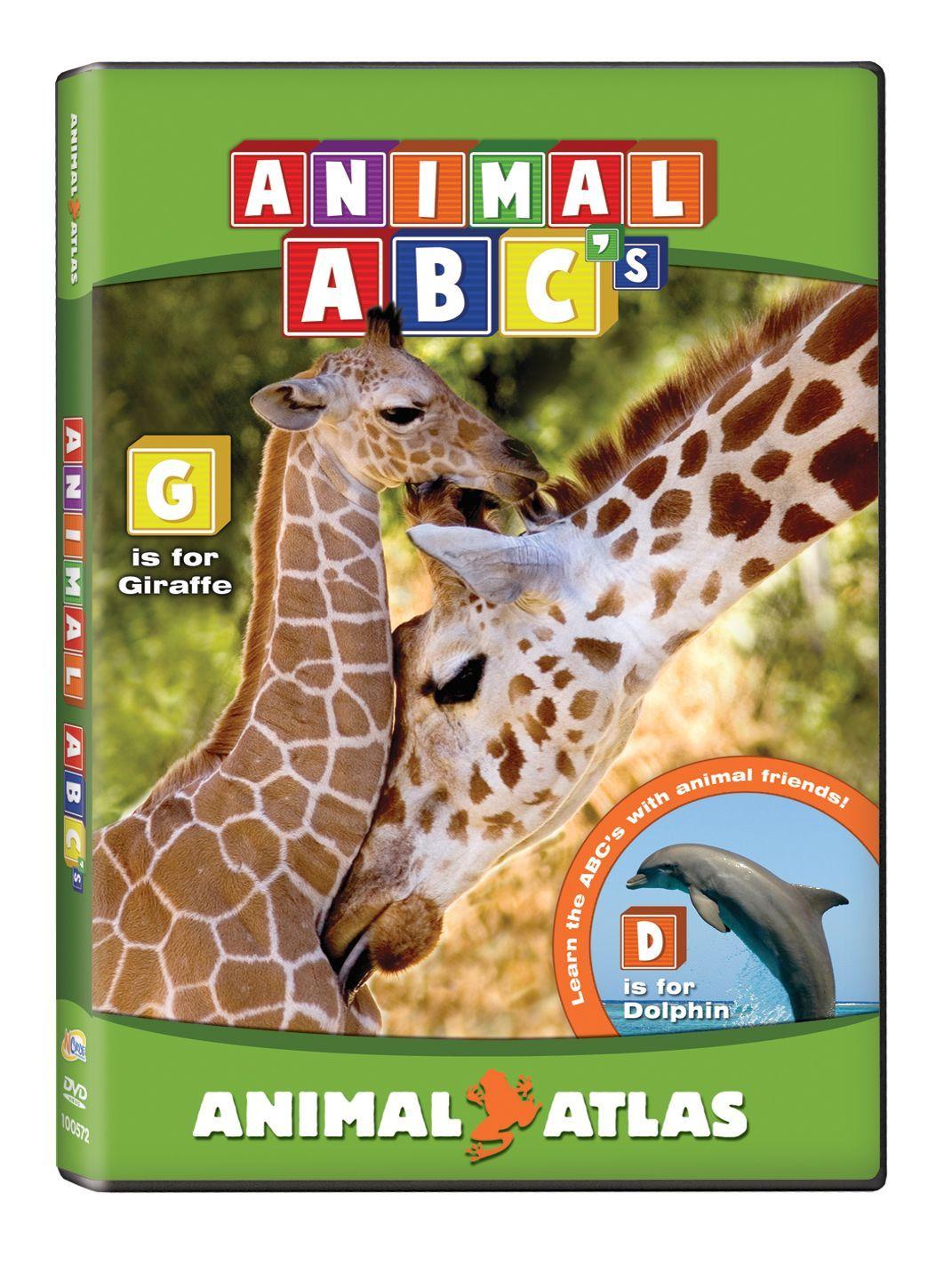 Animal Atlas: ABC's