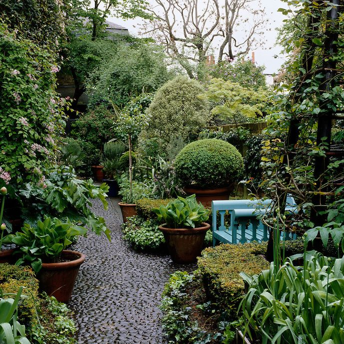 A pale blue garden chair is partly concealed by the lush planting in ...