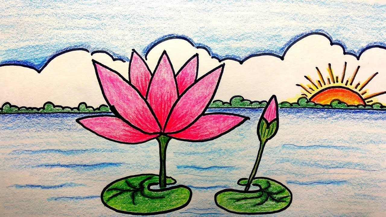 How to draw a water lily scenery step by step Çizimler