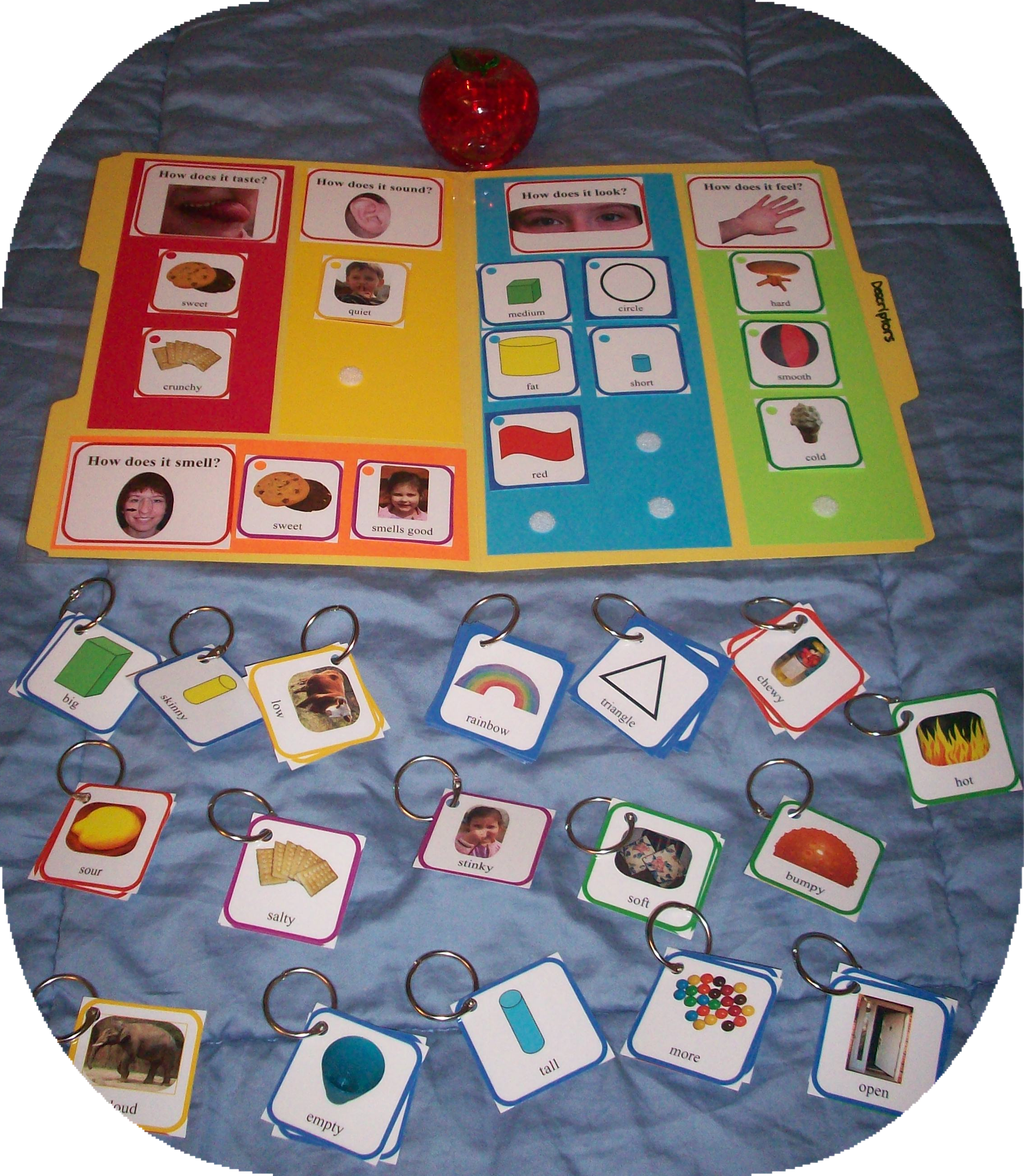 Tell Me About It Descriptors File Folder Game Arranged By
