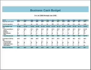 Business Cash Budget Template Microsoft Templates Pinterest