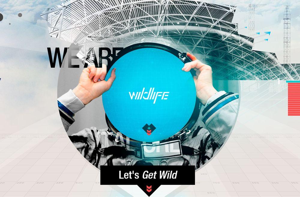 Wildlife - Los Angeles-based digital creative agency. http://www.findwa.com/best-webagency/wildlife/