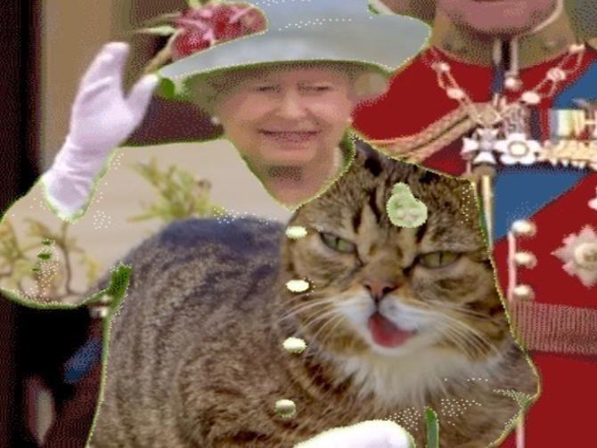 All Hail The Green Screen Queen Queen Green Screen Queen Elizabeth Memes Greenscreen