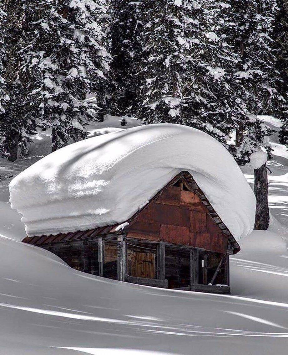 "Winter mood ☃️❄️ on Instagram: ""📍😍 Bakhmaro - Georgia 🇬🇪 ❄️❄️ • • • #christmas #winter #mostwonderfultimeoftheyear #ilovechristmas #christmasaccount #holidays #snow…"""