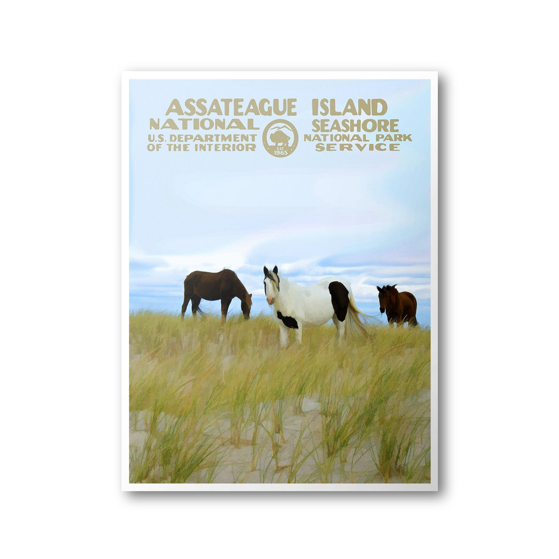 Assateague Island National Seashore Travel Poster & Postcard