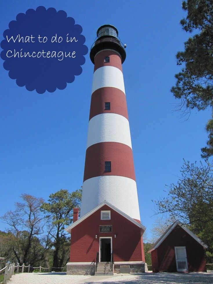 Things To Do In Chincoteague With Kids