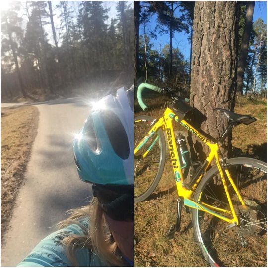 fina cyklar