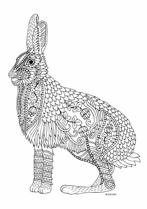 Pin By Pauline Miller On Hares And Rabbits Adult Coloring