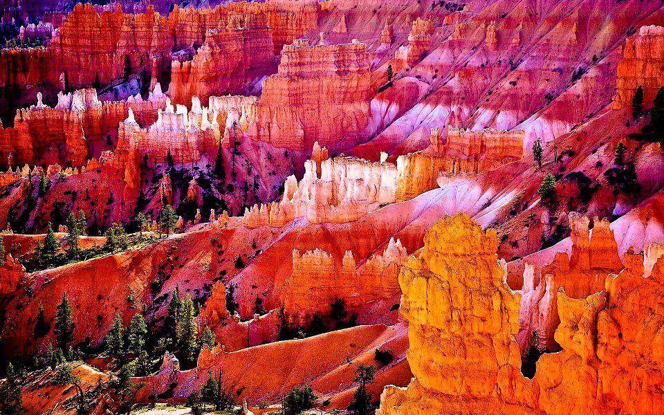 Wonders in color