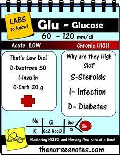Hypoglycemia Hyperglycemia Glucose BUN Creatinine Kidney