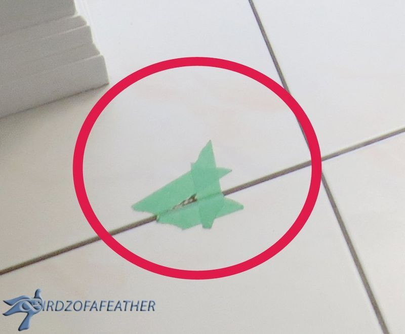 Got Chipped Floor Tile Try This Fix Pinterest Household And House