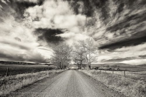i'd fill a knapsack with granola bars & willa cather novels and just walk along this road.