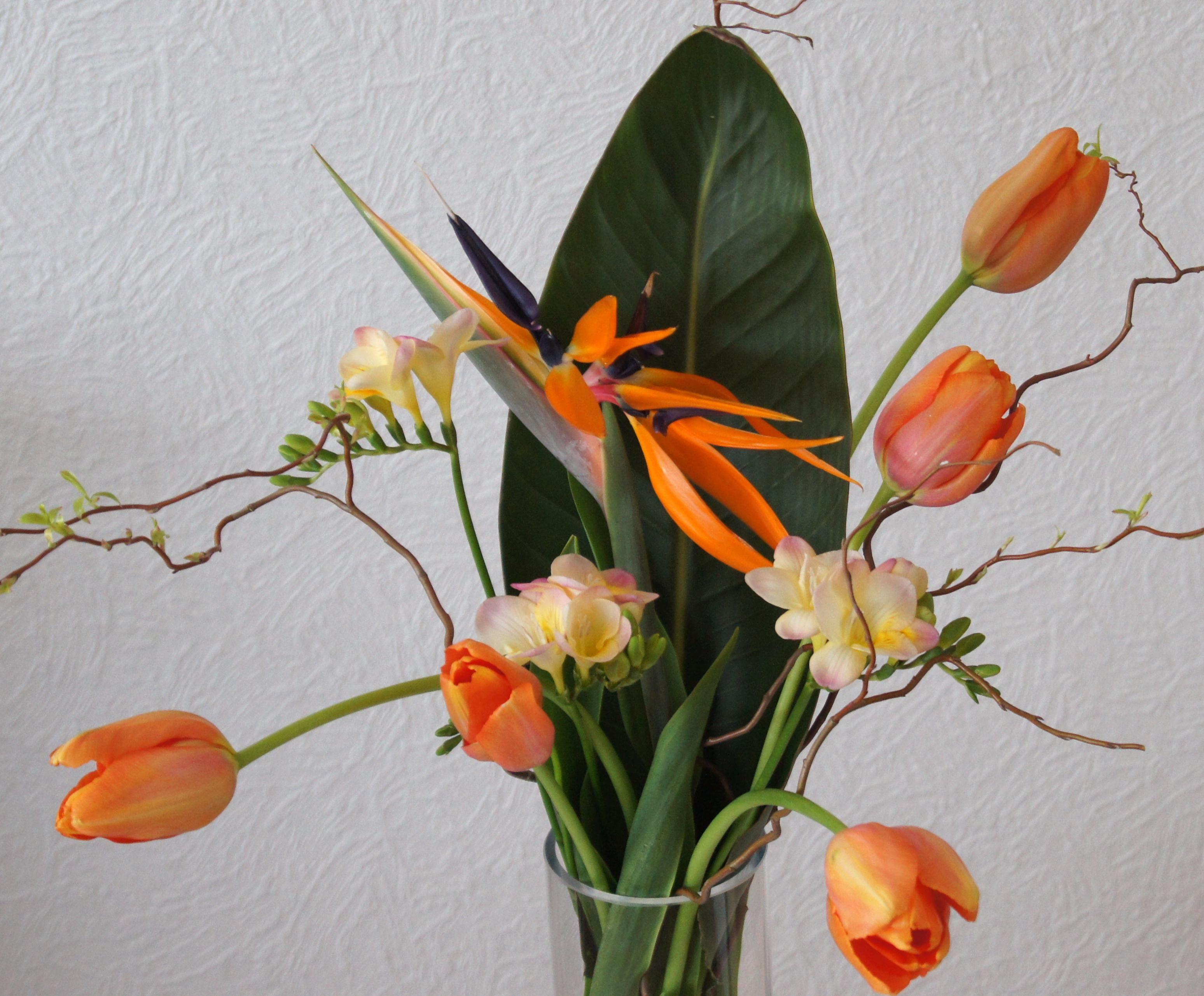 Erfreut Frühling Färbung Aktivitäten Bilder - Druckbare Malvorlagen ...
