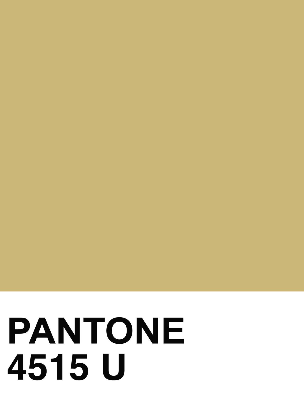Pantone Solid Uncoated Photo