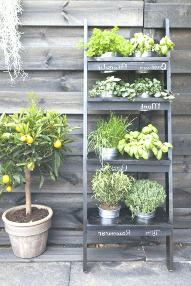 12 idee decorative per l'esterno piante, vasi, mini