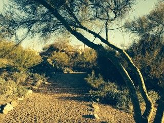 Home Buyers Find Your Next House Here Oro Valley Country Roads Alone Time
