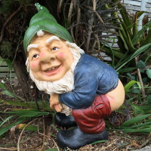 Indecent Gnome Rude Mooning Garden Ornament Figurine