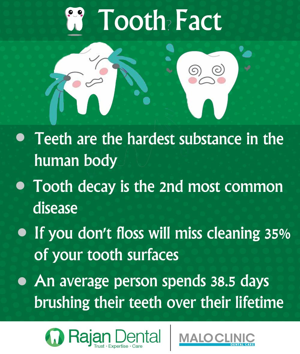 Tooth Fact