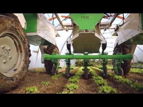 Robot Dino : le robot désherbeur enjambeur légumes - YouTube