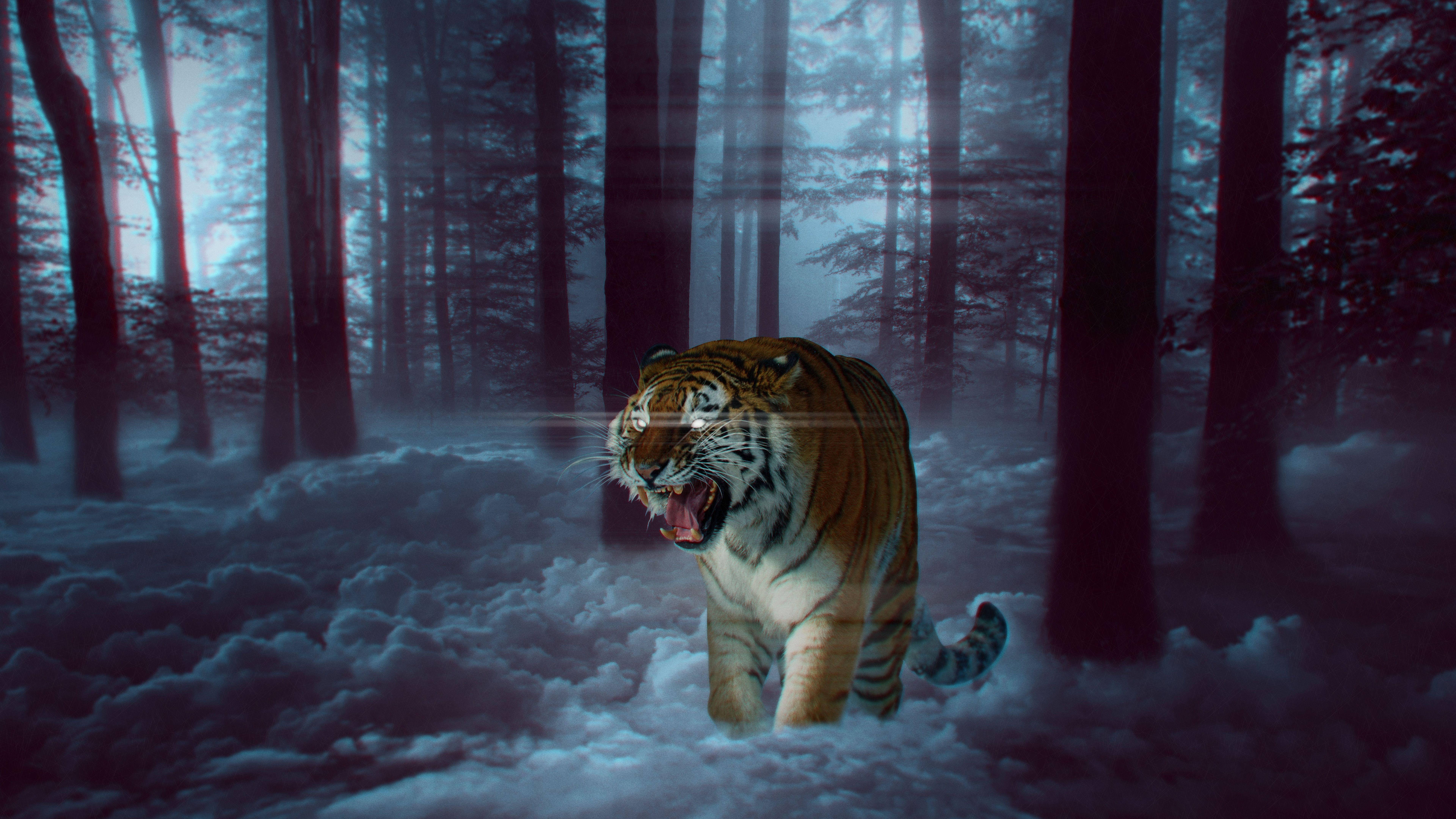 Epic 8k Tiger Siberian Tiger Bengal Tiger Felidae Tree