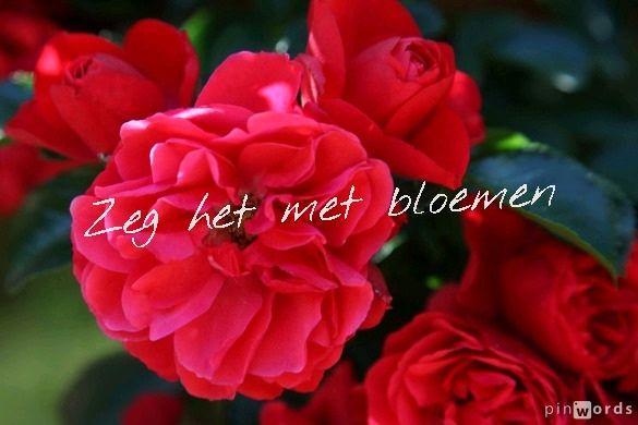Zeg het met bloemen #ECOstyle #spreuken #citaten
