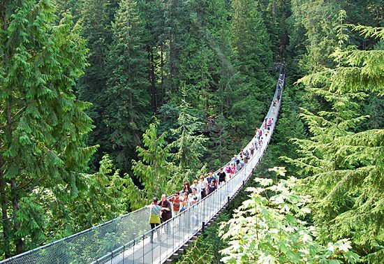 One of Vancouver's most prized possessions, the Capilano Suspension Bridge exudes historical characteristics that has become a tourist treasure for the province of British Columbia. Not only is the Capilano Suspension Bridge a great place to explore for your own curiosity as a local resident, out of town visitor or tourist, but it's an experience that children will not forget.  www.facebook.com/WildCanadaSalmon